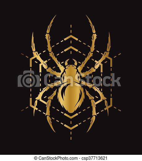 Araña dorada y telaraña. - csp37713621