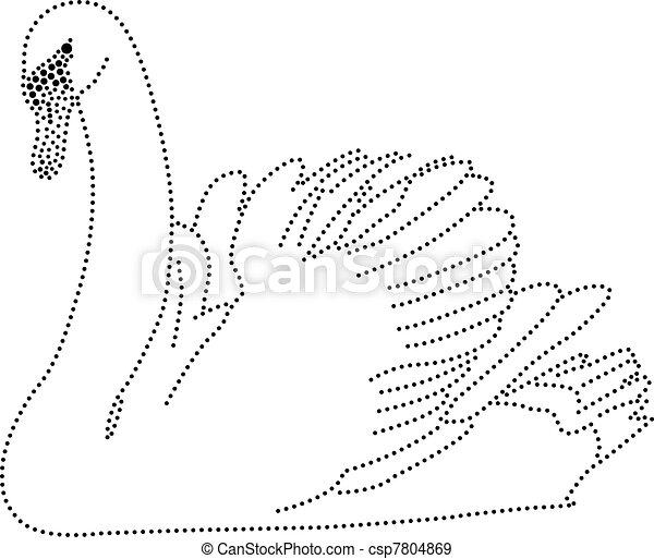 dots swan csp7804869