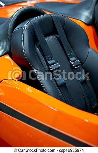 Sporty Car Seat Belts