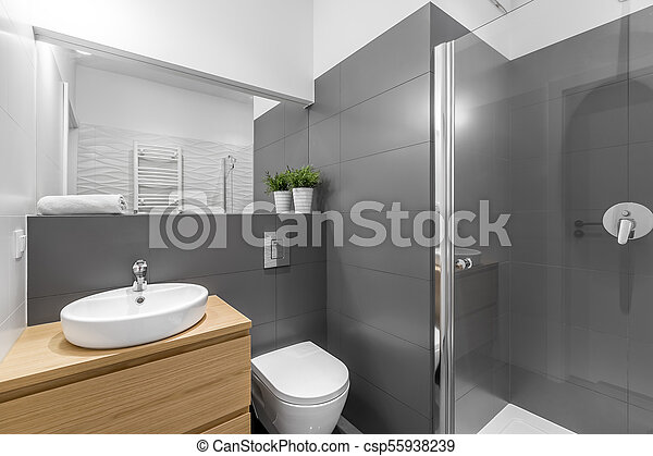 Douche, salle bains, moderne, gris. Toilette, salle bains, bois ...