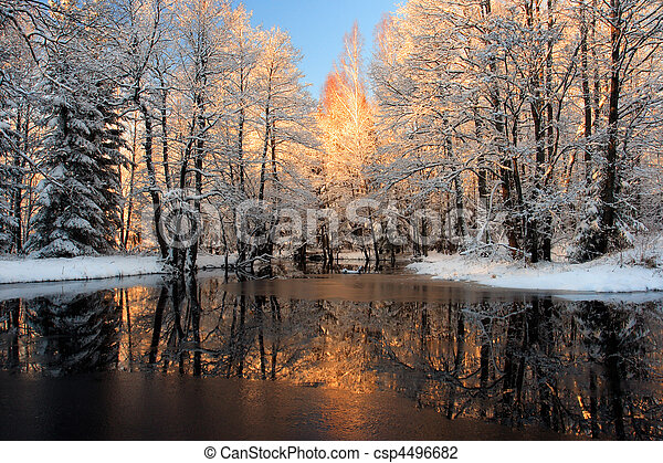 dourado, reflexão, luz solar - csp4496682