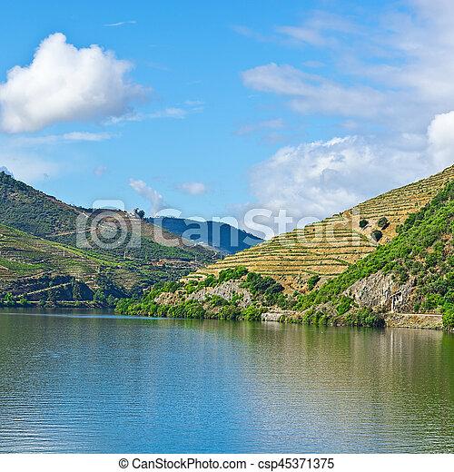 Fluss In Portugal douro fluß portugal douro banken weinberge fluß bild