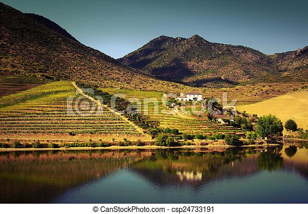Douro Landscape IV - csp24733191