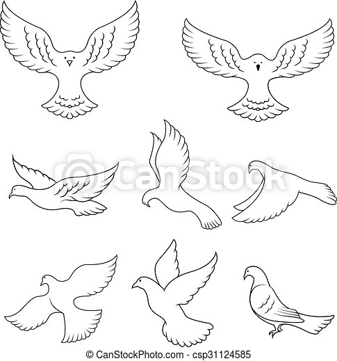 Dove peace - csp31124585
