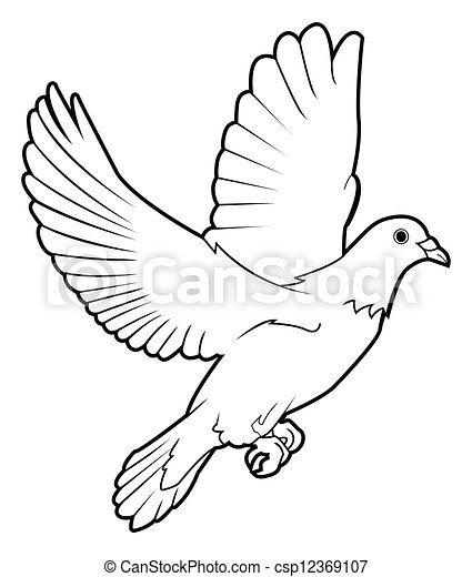 dove peace - csp12369107