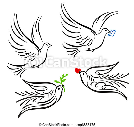 Dove, pigeon - csp6856175