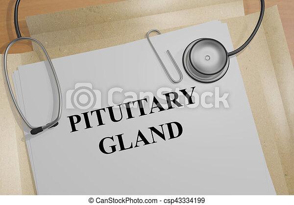 Drüse, pituitär, begriff, -, medizin. \'pituitary, titel ...