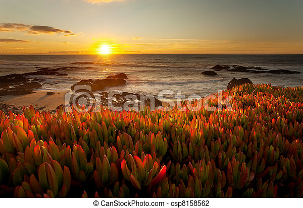 Dramatic California Sunset - csp8158562