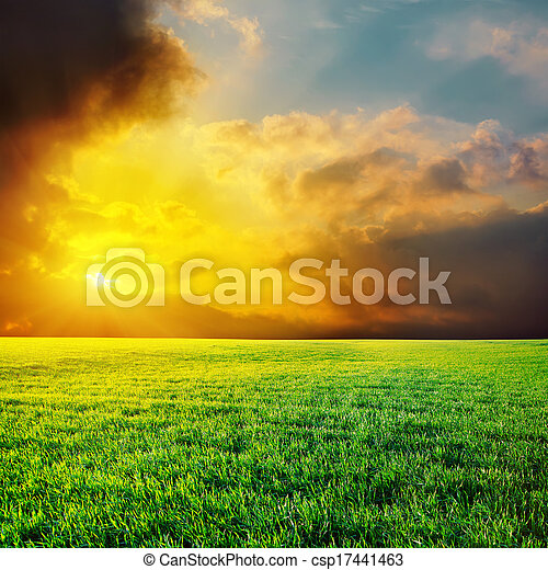 dramatic sunset over green grass field - csp17441463