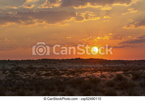 Dramatic sunset over the grassy plains of the Kalahari - csp52490110