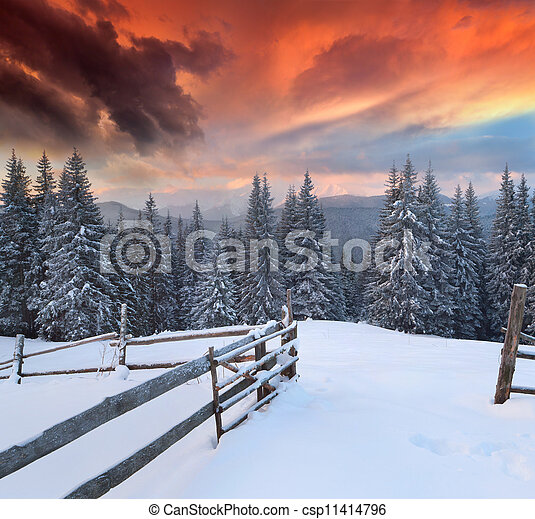 Dramatic winter landscape in the mountains. Colorful sunrise - csp11414796