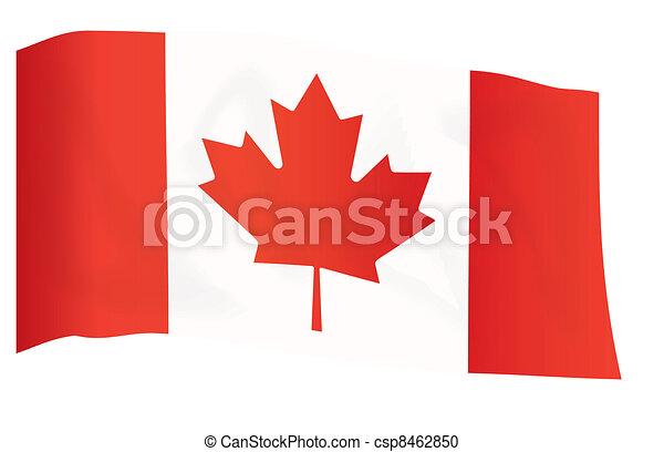 Vecteur De Drapeau De Canada Et De Drapeau D'Union