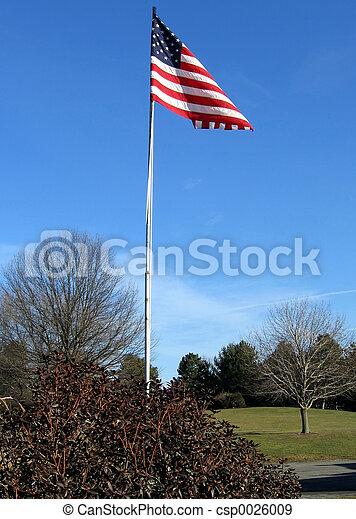 drapeau ondulant - csp0026009