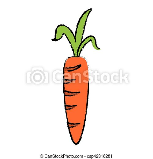 Drawing Fresh Carrot Vegetable Healthy Icon Vector Illustration Eps 10