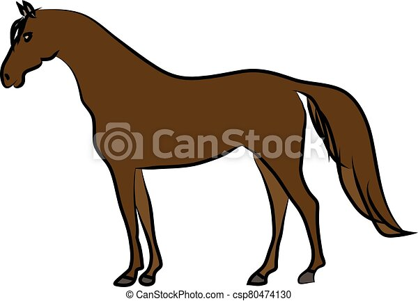 Drawing of brown horse on a white background. Sketch, drawing by hand. - csp80474130