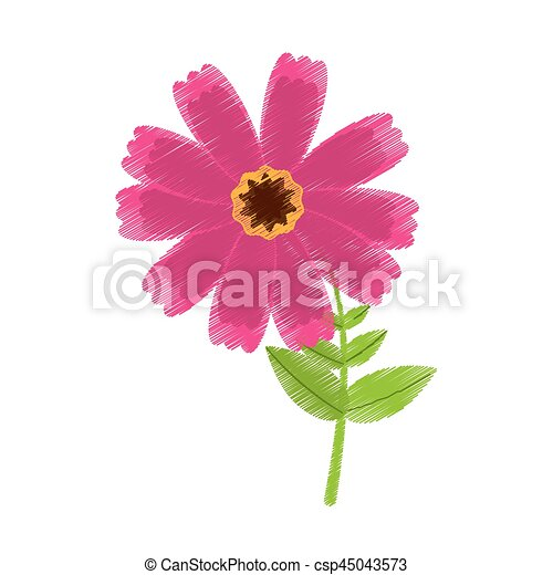 Drawing pink cosmos flower spring icon vector illustration drawing pink cosmos flower spring icon csp45043573 mightylinksfo Image collections