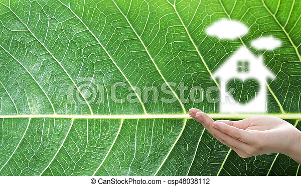 Dream house concept of home sweet home with cloud over woman hand on green leaf texture background - csp48038112