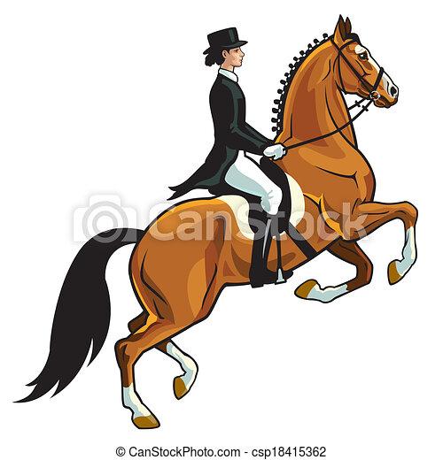 dressage, cavalier - csp18415362