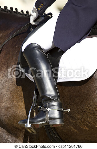 dressage horse and rider - csp11261766