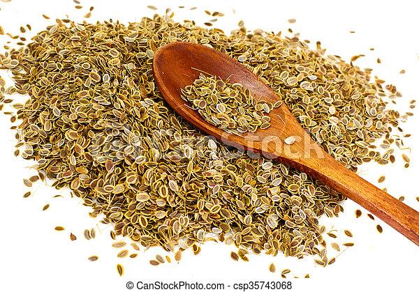 Dried Fennel Seeds - csp35743068