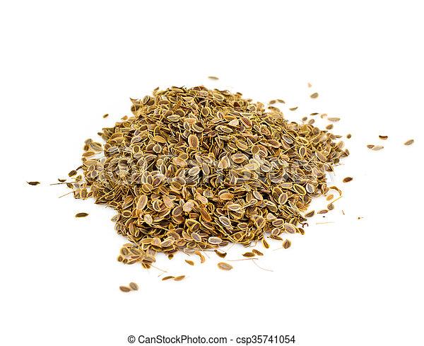 Dried Fennel Seeds - csp35741054