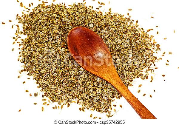 Dried Fennel Seeds - csp35742955