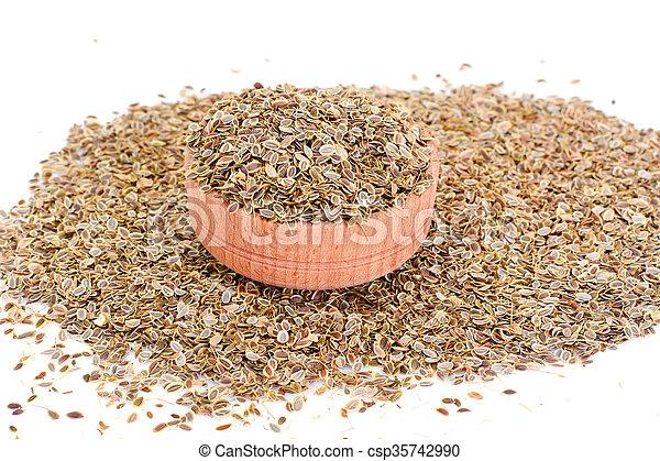 Dried Fennel Seeds - csp35742990