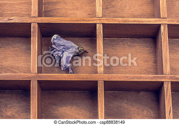 Dried flower put in a wooden box - csp88838149