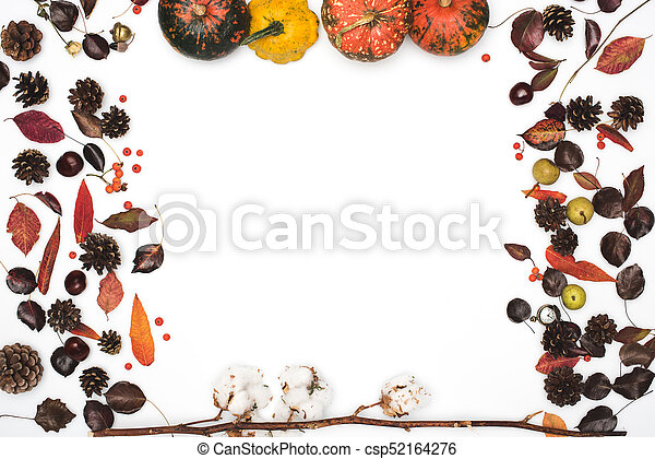 dried leaves and pumpkins - csp52164276