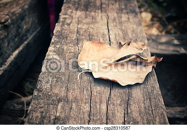 Dried leaves - csp28310587