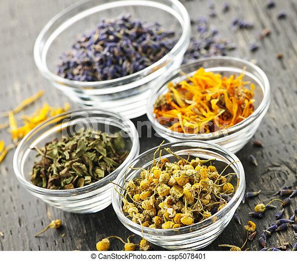 Dried medicinal herbs - csp5078401