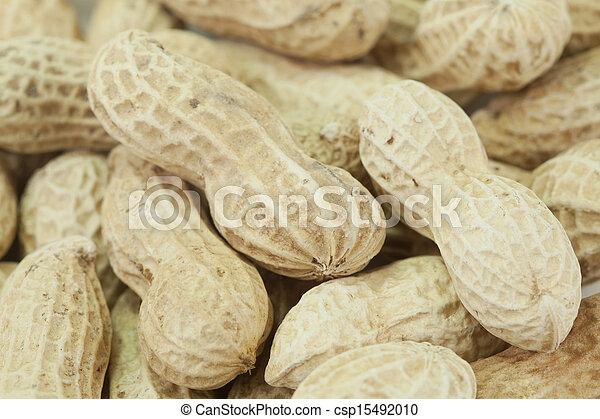 Dried peanuts in closeup - csp15492010