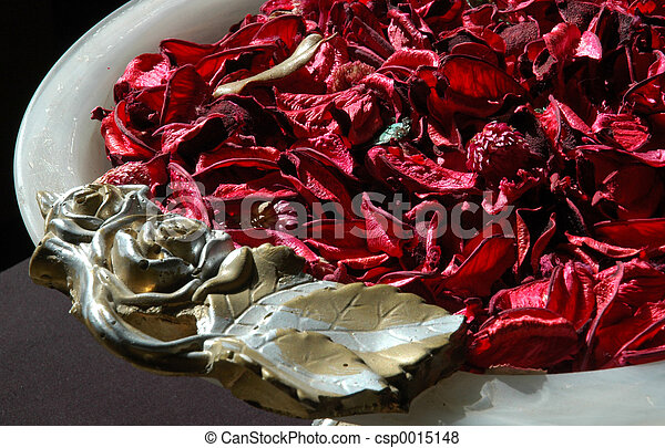Dried red 1 - csp0015148