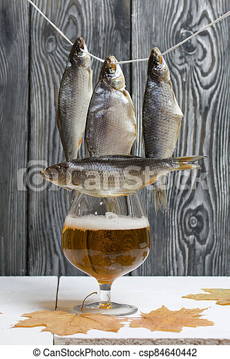 Dried river fish hangs on a rope. Nearby is a glass of beer and dried maple leaves. There is a roach on the glass. - csp84640442