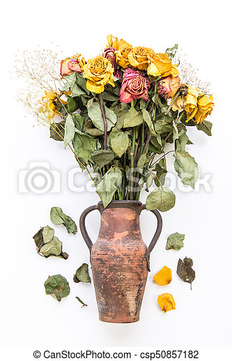 Dried Roses In Vase Dried Yellow Roses In Vase Isolated On A White
