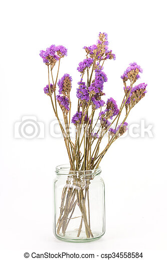 Dried statice flowers isolated on white background pictures search dried statice flowers isolated on white background csp34558584 mightylinksfo Images