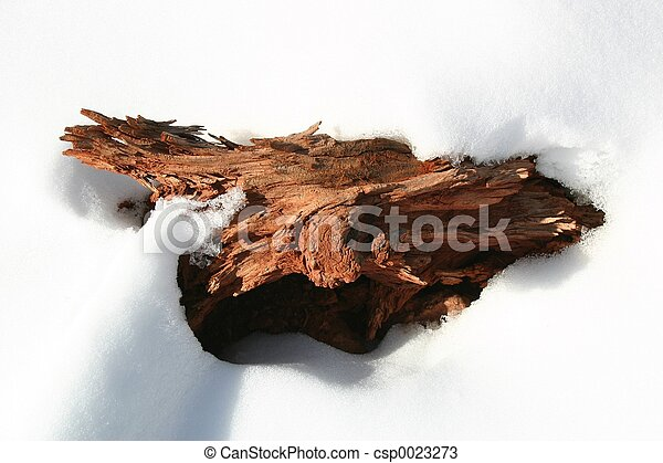 Driftwood in Snow - csp0023273