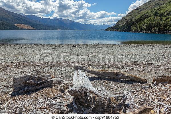 Driftwood on the shore of Lake Wanaka in New Zealand - csp91684752
