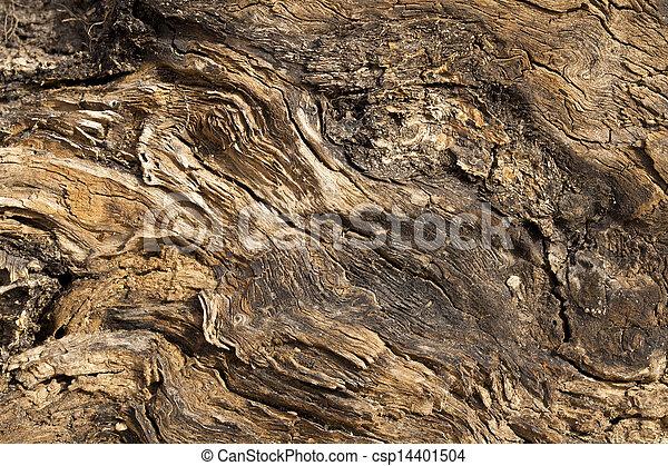 Driftwood - csp14401504