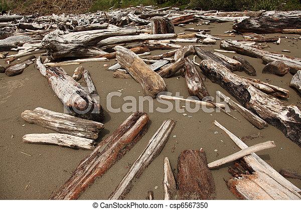 Driftwood - csp6567350