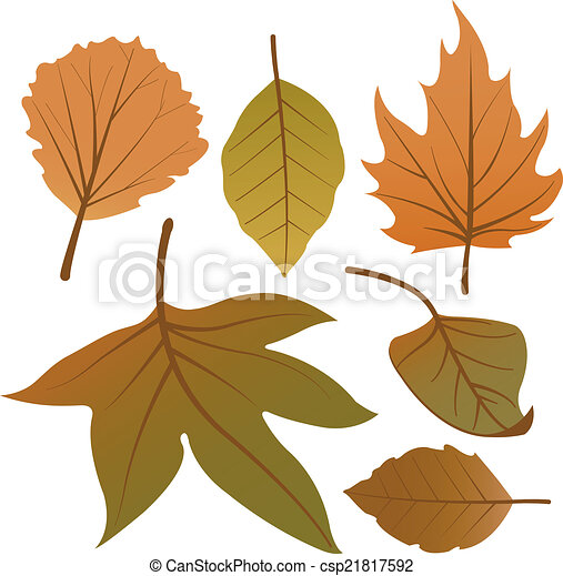 Dry autumn leaves - csp21817592