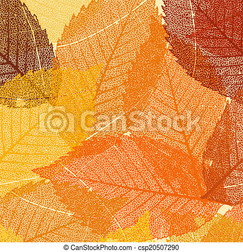 Dry autumn leaves template. EPS 8 - csp20507290