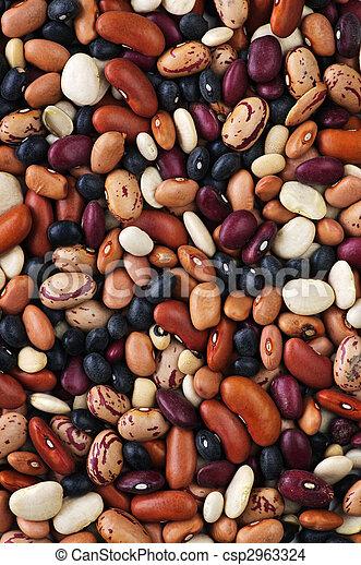Dry beans - csp2963324