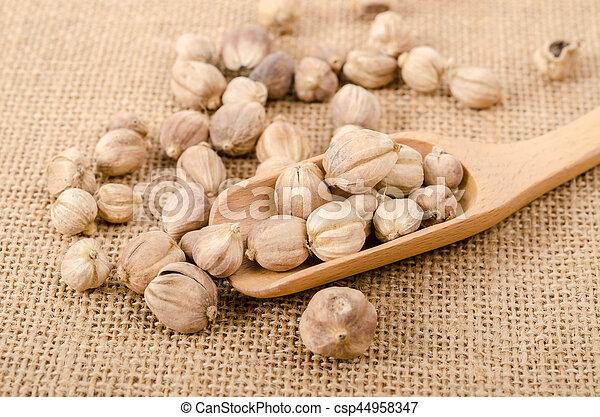 Dry cardamom seeds in wooden scoop. - csp44958347