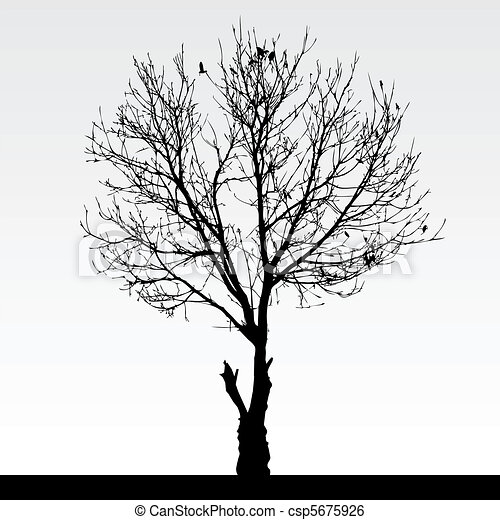 Dry Dead Tree - csp5675926