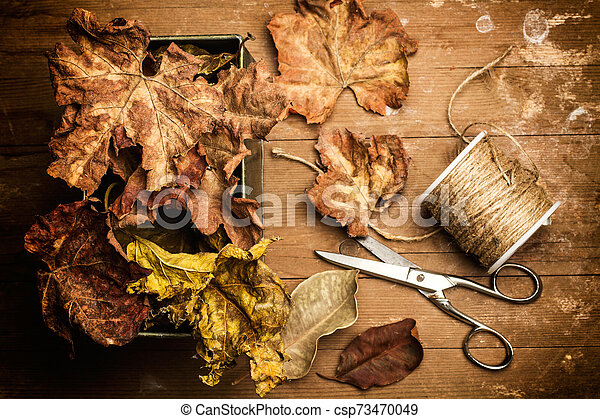 Dry leaves and a golden thread - csp73470049