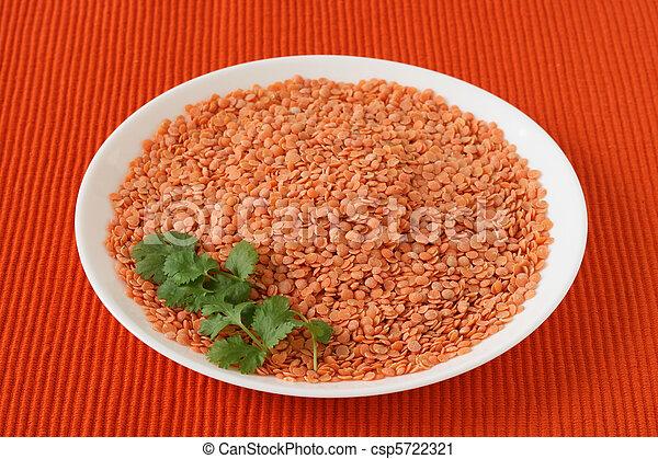 Dry lentil on a plate - csp5722321