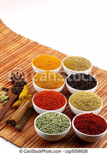 dry spicy powders - csp5056626