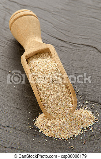 dry yeast on a wooden shovel - csp30008179