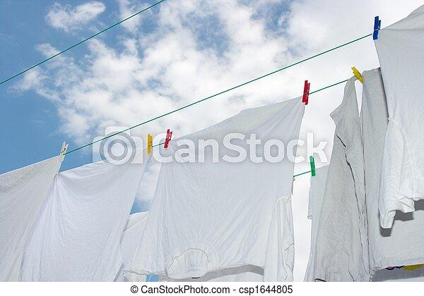 Drying - csp1644805